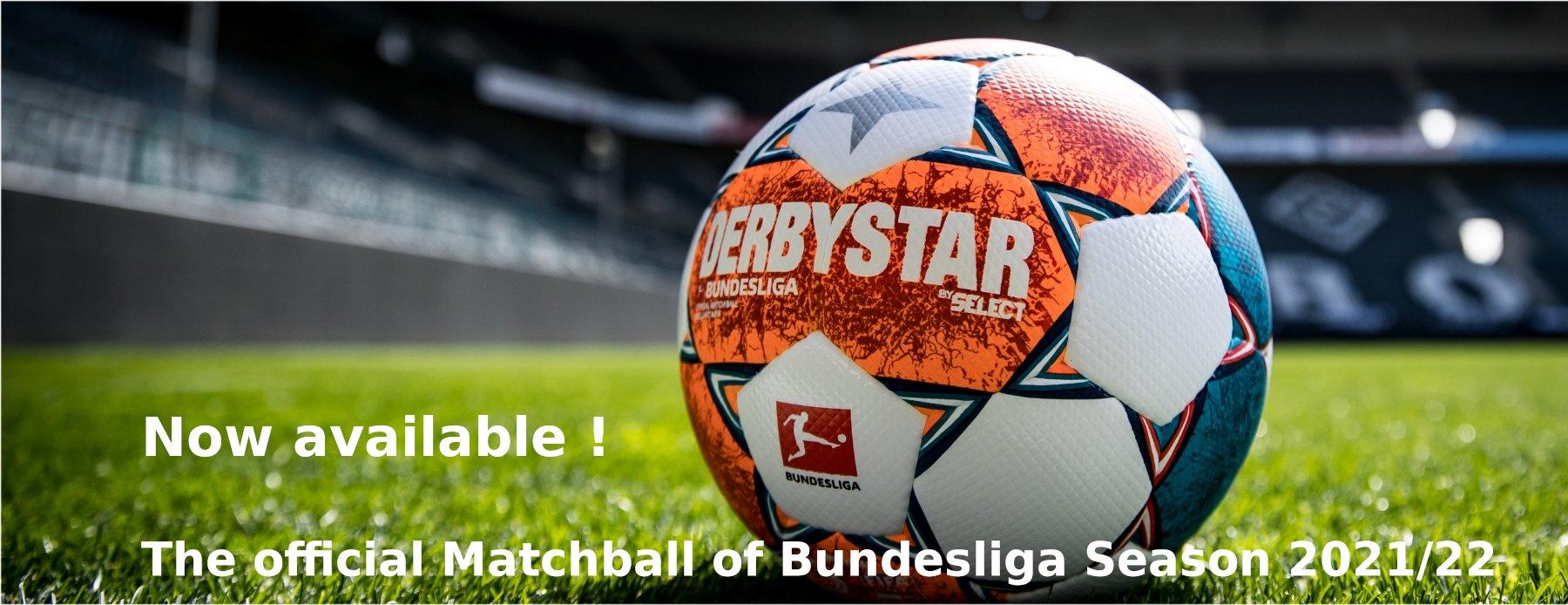 DS Bundesliga EN