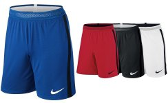 Nike VAPOR KNIT Short