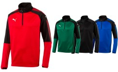 Puma 1/4 Zip Training Top ASCENSION