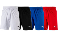 puma Shorts FINAL evoKNIT